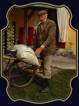St. Germain Bike Messenger